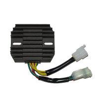 ElectroSport Charge controller ESR 124