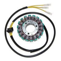 ElectroSport Stator ESG014