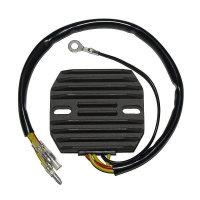ElectroSport Charge controller ESR 101